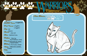 warriors valley stream application by Milcay1
