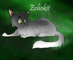 Echokit by iTrixieKitty