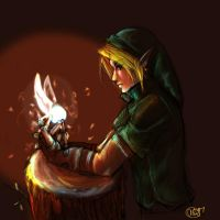 Link and Navi by AstuteObservations