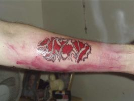 Canadian through and through by TattooedMorrigan