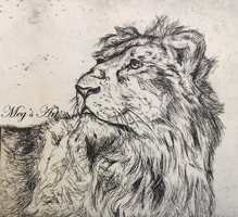Lion Etching by stardust12345
