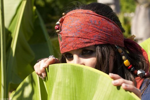 Elo Sparrow Jungle hide by elodie50a