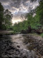 Little Stream by abstractcamera