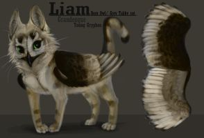 Liam Character sheet [Updated] by milinkre