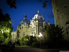 Museum of Hungarian Agricultur by 5haman0id
