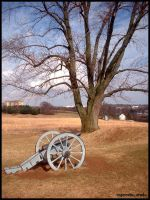 Valley Forge cannon2 by raverqueenage