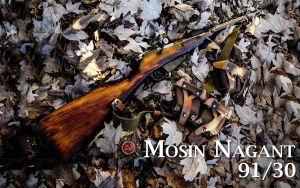 Mosin Nagant 91/30 Wallpaper by dhrandy