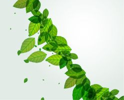 Green-Leaves-Vector-Background by vectorbackgrounds