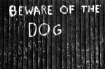 Beware of the dog by bulleblue