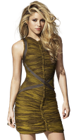 Shakira PNG Render by GAJMEditions