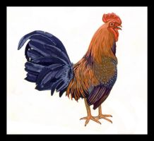 painting cock by eyadz