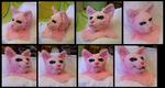 Bubblegum Cat Head (FOR SALE with paws and tail) by CuriousCreatures