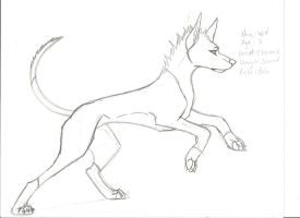 Wolf the Ibizan Hound by Wolf-Tang