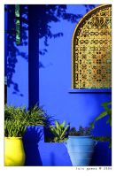 Majorelle by gomes