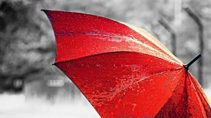 Red Umbrella by Bobfari