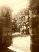 all saints graveyard, newcastle upon tyne by ulfthewolf