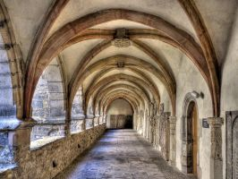 In The Cloister by MisterKrababbel