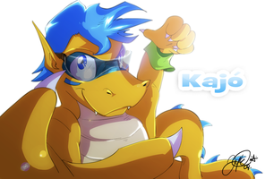 Kajo by super-tuler