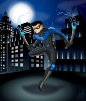 Nightwing by racookie3