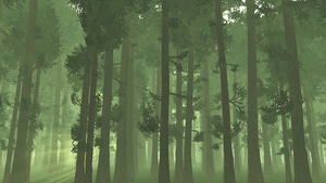 Inside the forest wallpaper by Vuenick