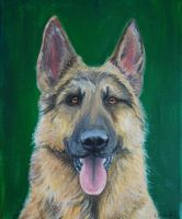 German shepherd by 4MUSE