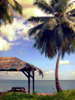 Seychelles Life: Moments 2 by v-collins