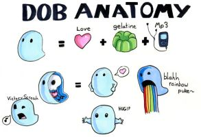Dob Anatomy by TheAmused
