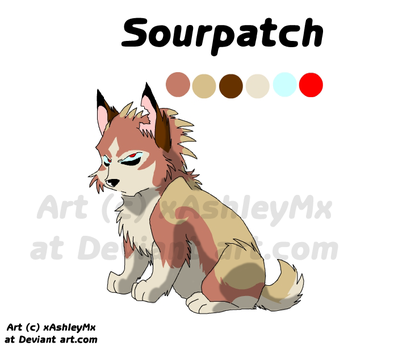 Sourpatch reference sheet OLD by TheCynicalHound