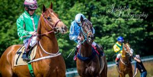Horse Racing 494 by JullelinPhotography