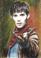 Merlin mini-portrait by whu-wei