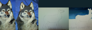 Wolf Portrait -Day 4 .. Final Painting - Day 1 by Faeora