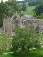 Bolton Abbey 2 by Distorted-Colours