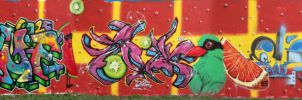 Metz 2014 - Trip II - whole wall by Senf42