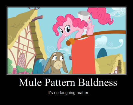 MLPFiM Inspirational Poster 1 by PurpleCow81