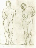 Proportion Studies by BlackDelphin