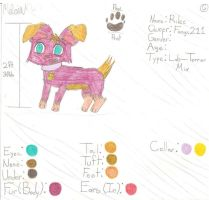 AT: Adopt for Fangs211- Rilee by Meli-chan3