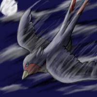 Speed Swellow by Pikachu-And-Umbreon
