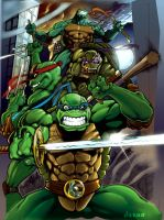 tmnt by Nardius