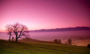 Bavarian sunrise by mutrus