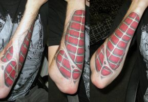 skin rip - spiderman by nickels