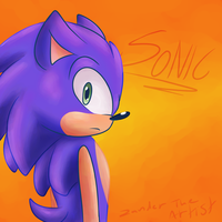 Sonic The Hedgehog by Zander-The-Artist