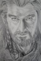 Thorin Oakenshield (The hobbit) Drawing by TMdoodles