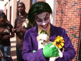 Joker and... a puppy. by JokezOnYou-Cosplay