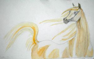 horse detail 1 by Luphia