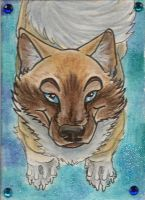 Moonsong Star Aceo by Eviecats