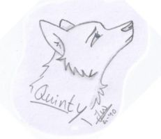 Quinty 1 by Canisography