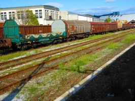 Freight carriages by GladiatorRomanus