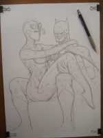 batman and catwoman by macacaralho