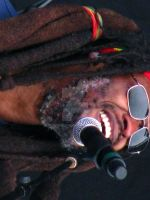 Steel Pulse by alucinante