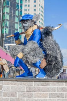 sly cooper at youmacon by Elensar-Amero